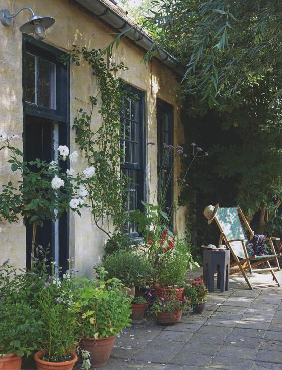 Mona's courtyard web.jpg2.jpg