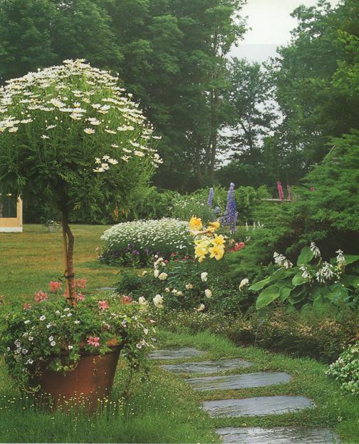 Mona's garden topiary web.jpg3.jpg