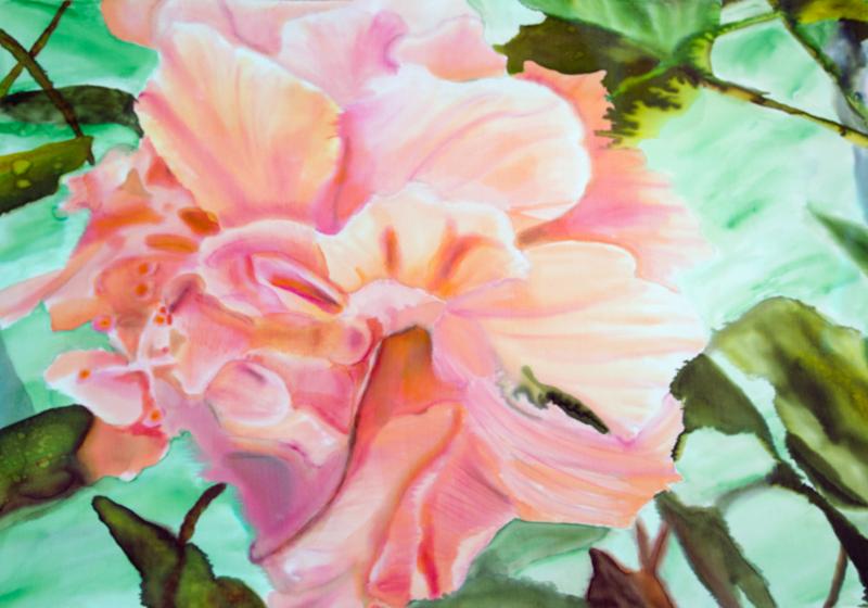 """Peach Hibiscus  2012, 18""""x24""""  $480"""