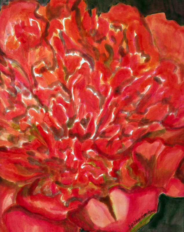 "Orange/Red Peony  2012, 12""x16""  $240"