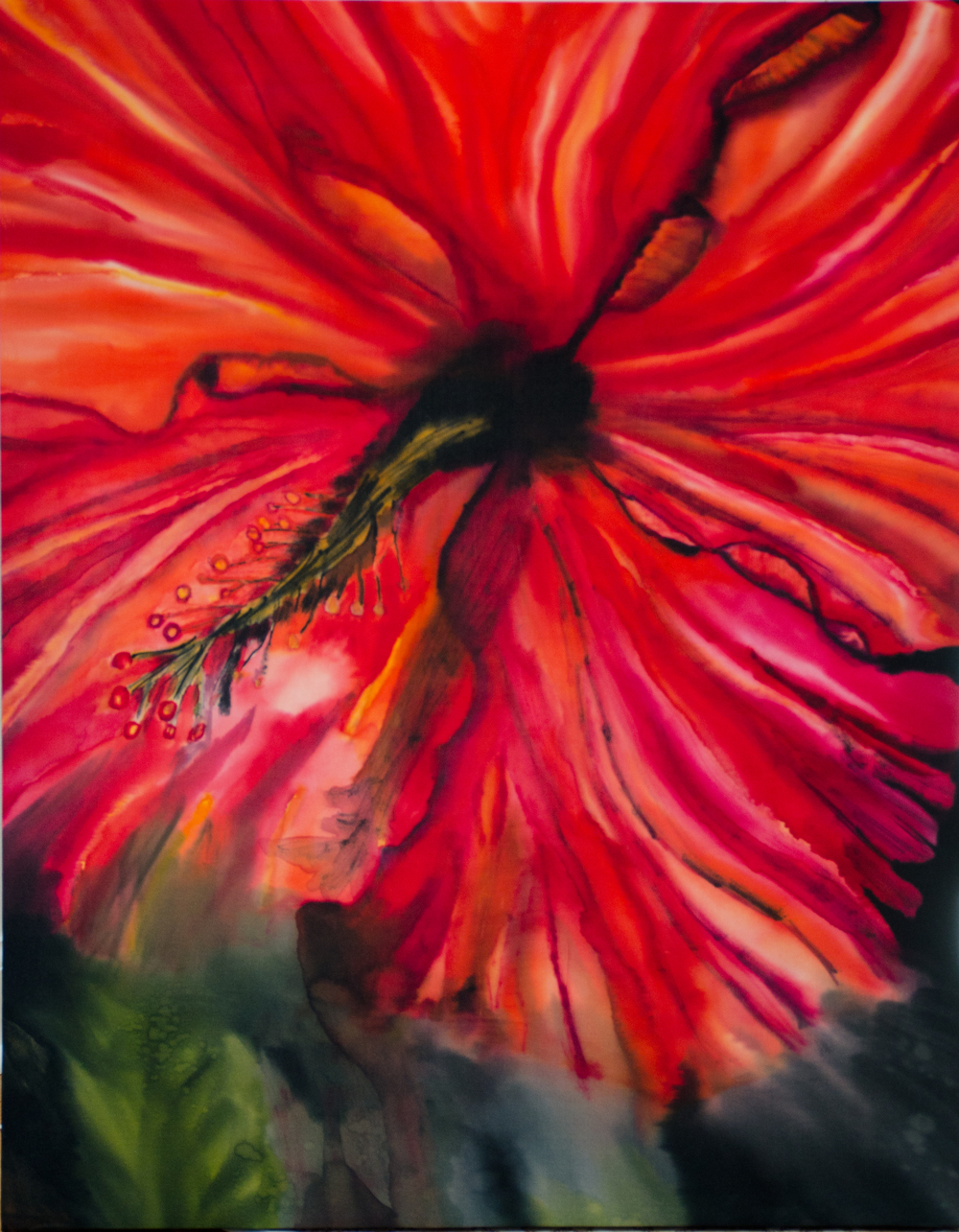 "Red Hibiscus  2013, 22""X28""  $595"