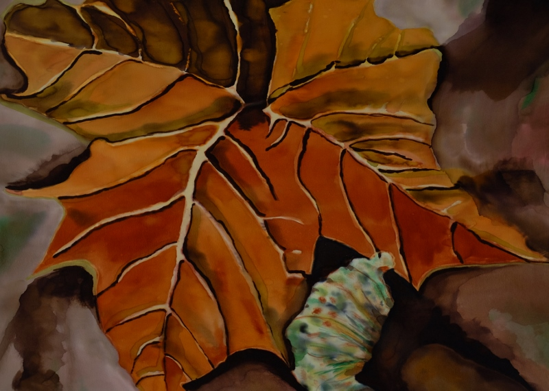 "Leaf and Lichen  22"" X 28""  $595"