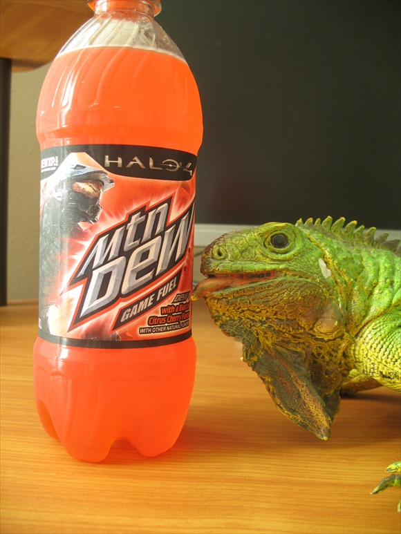 Mountain Dew Game Fuel 2012 Citrus Cherry580.JPG