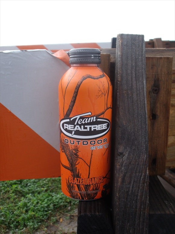 Team Realtree Outdoor Orange Blaze580.jpg
