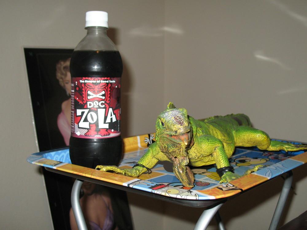 Doc Zola.JPG