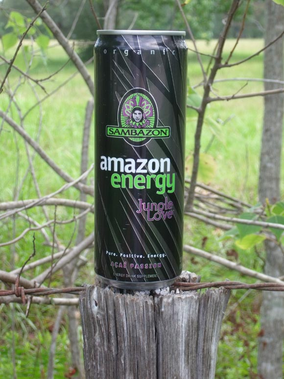 Sambazon Amazon Energy Jungle Love580.jpg
