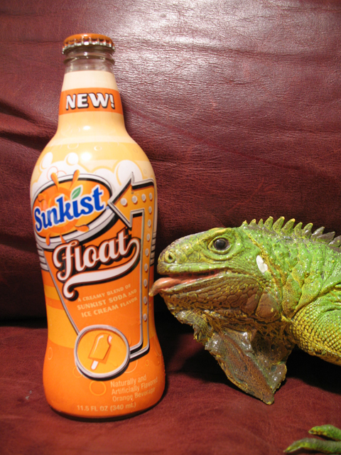Sunkist Float480.jpg