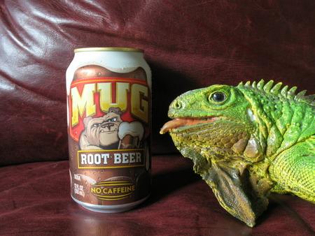 Mug Root Beer TheSodaJerks