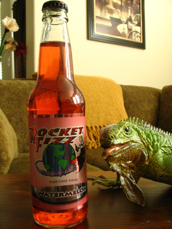 Rocket Fizz Watermelon580.JPG