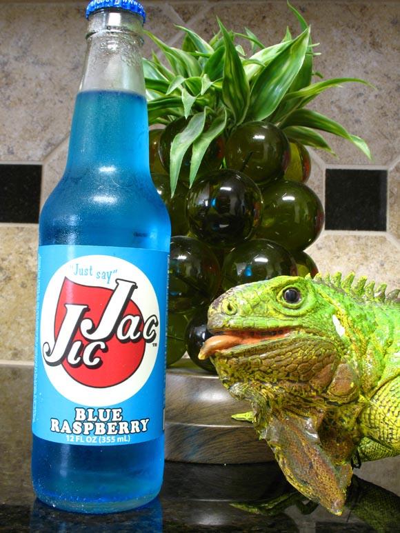Jic Jac Blue Raspberry580.jpg