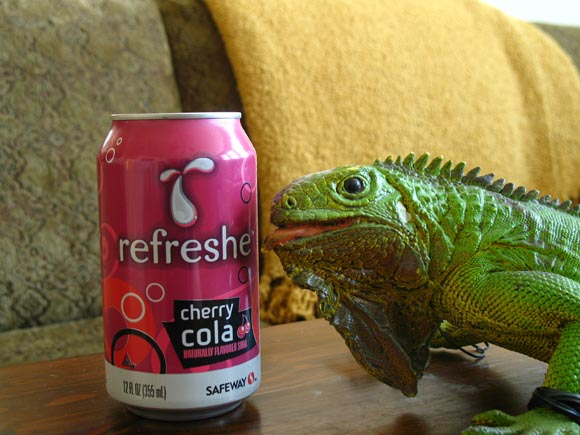 Refreshe Cherry Cola580.jpg