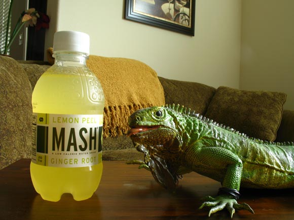 Mash Lemon Peel Ginger Root580.jpg