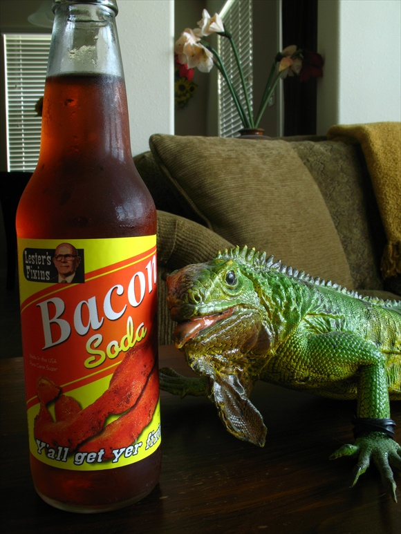 Lesters Fixins Bacon Soda580.JPG