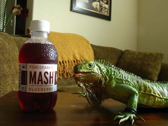 Mash Blueberry Pomegranate580.jpg
