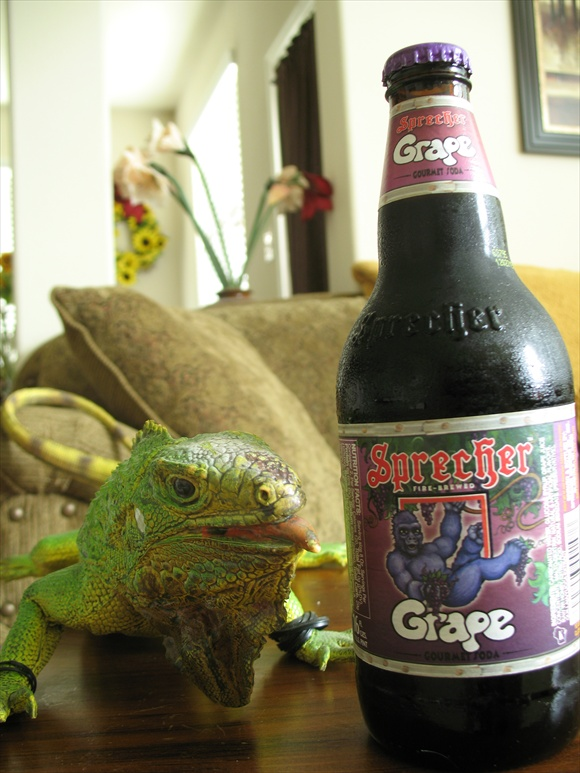 Sprecher Grape580.JPG