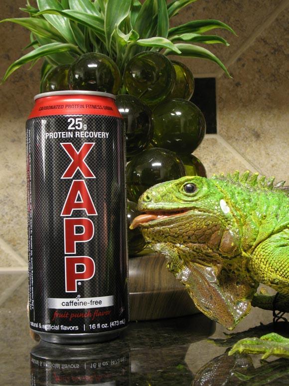 XAPP Fruit Punch Caff Free580.jpg