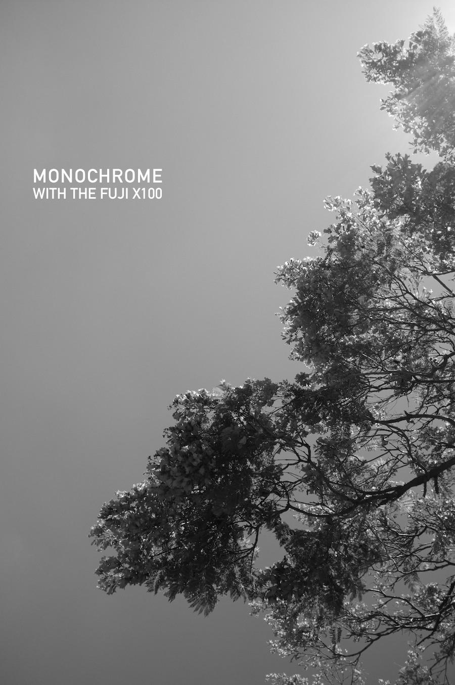 Fuji x100 monochrome