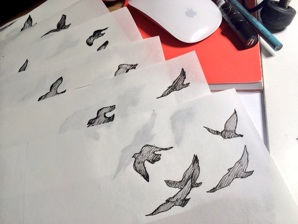 Animated Bird process sketch