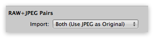 The Aperture RAW+JPEG Pairs handling option on import
