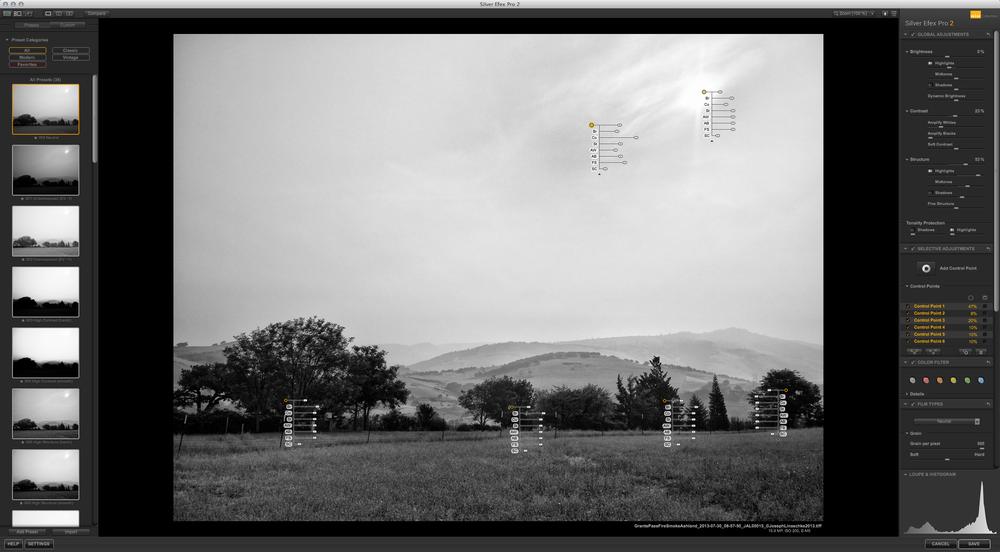 Nik Silver Efex Pro II interface