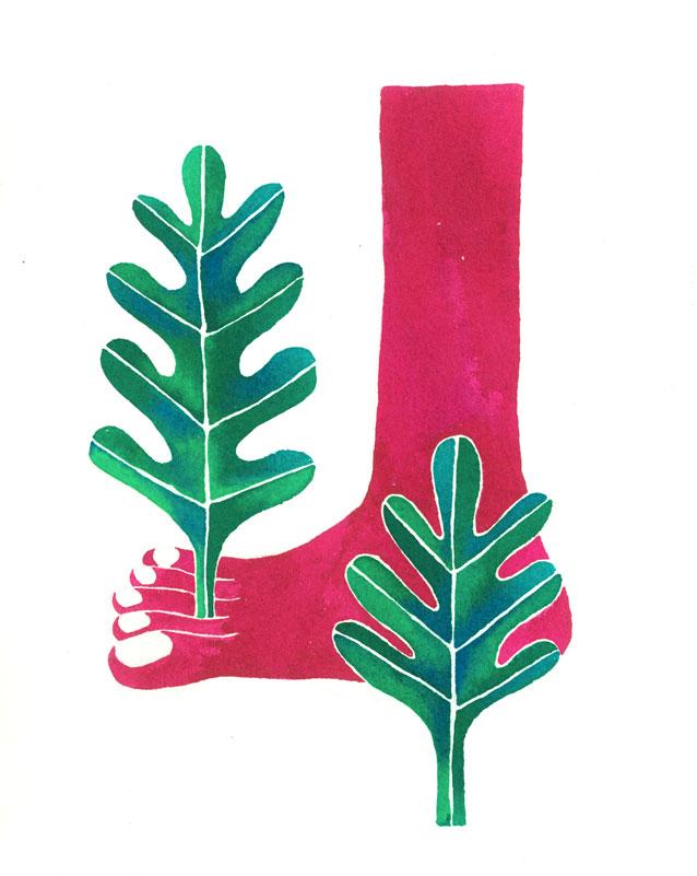 plant-toes.jpg