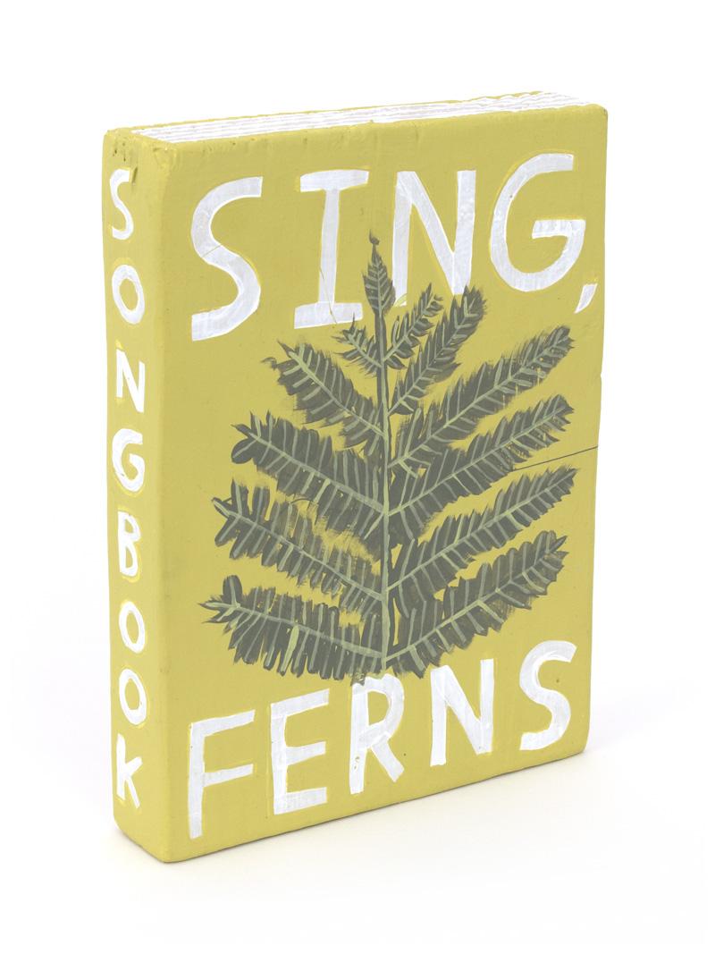 sing-ferns.jpg