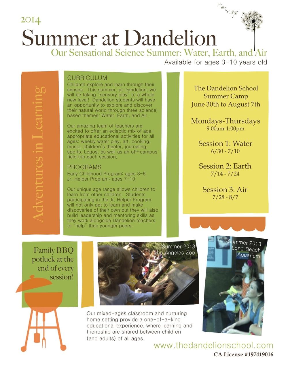 Spring Break Summer Camps Dandelion