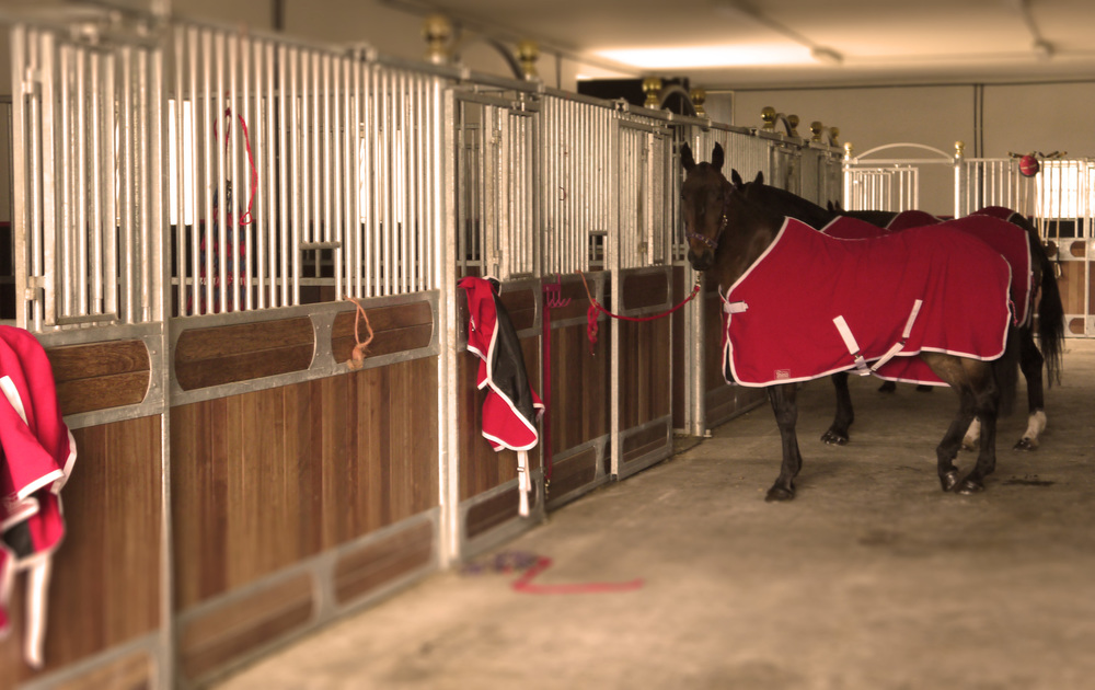 Stables Red Coats.jpg