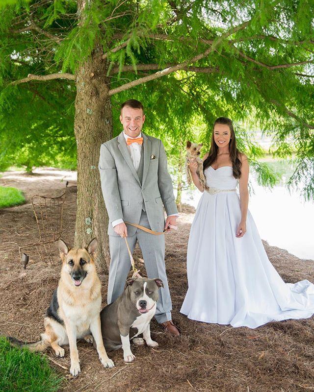 Animals are always welcome with us! #nashvilleweddingphotographer #weddingday #nashvillewedding #bride #groom #weddingdress #wedding #puppy #southernbride #bagsbyranch