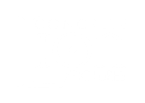 concrete_lion.png