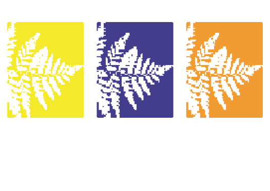 casselberry_city.png