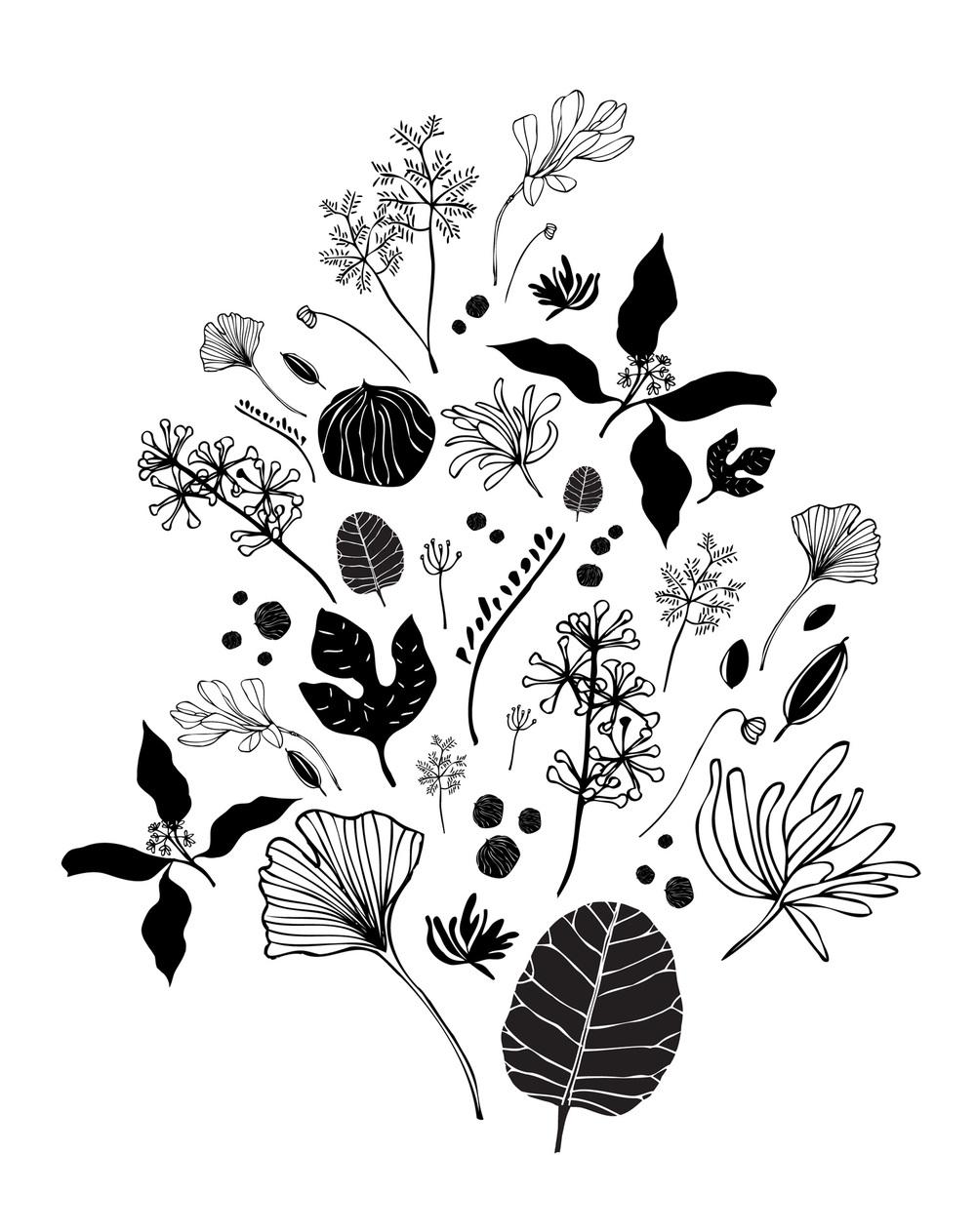 Flora 3 - Laurie Baars