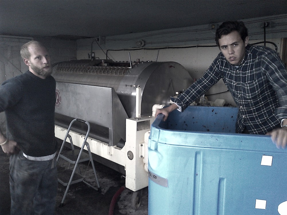 Assistant winemaker Richard with Sukko from Origin Liberty restaurant in Toronto, emptying the fermenter into Hinterland's horizontal tank press...