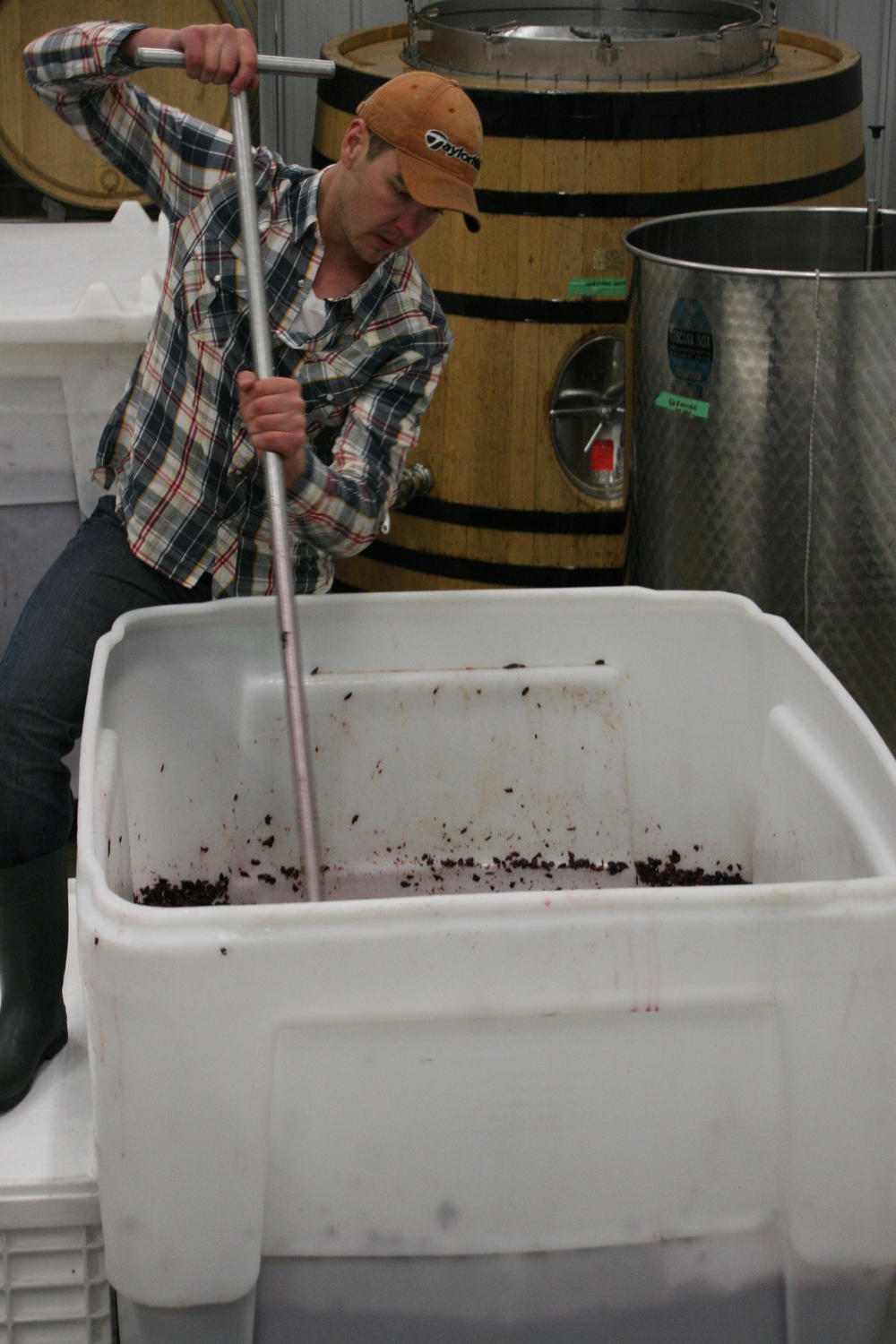 Me punching down Pinot Noir