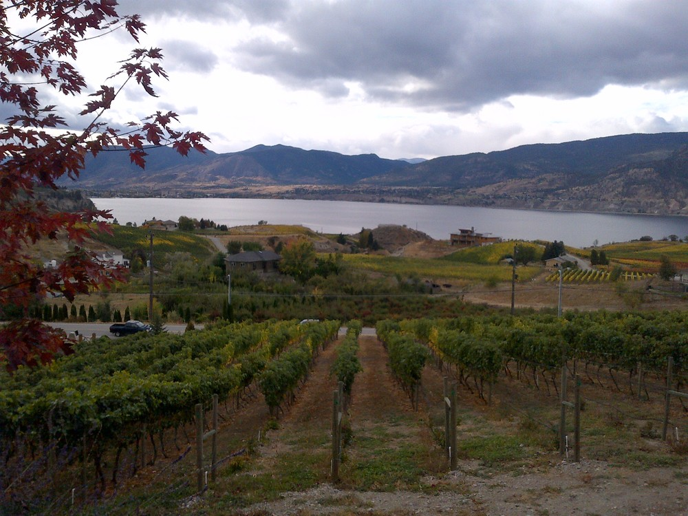 The view down to Lake Okanagan from the winery