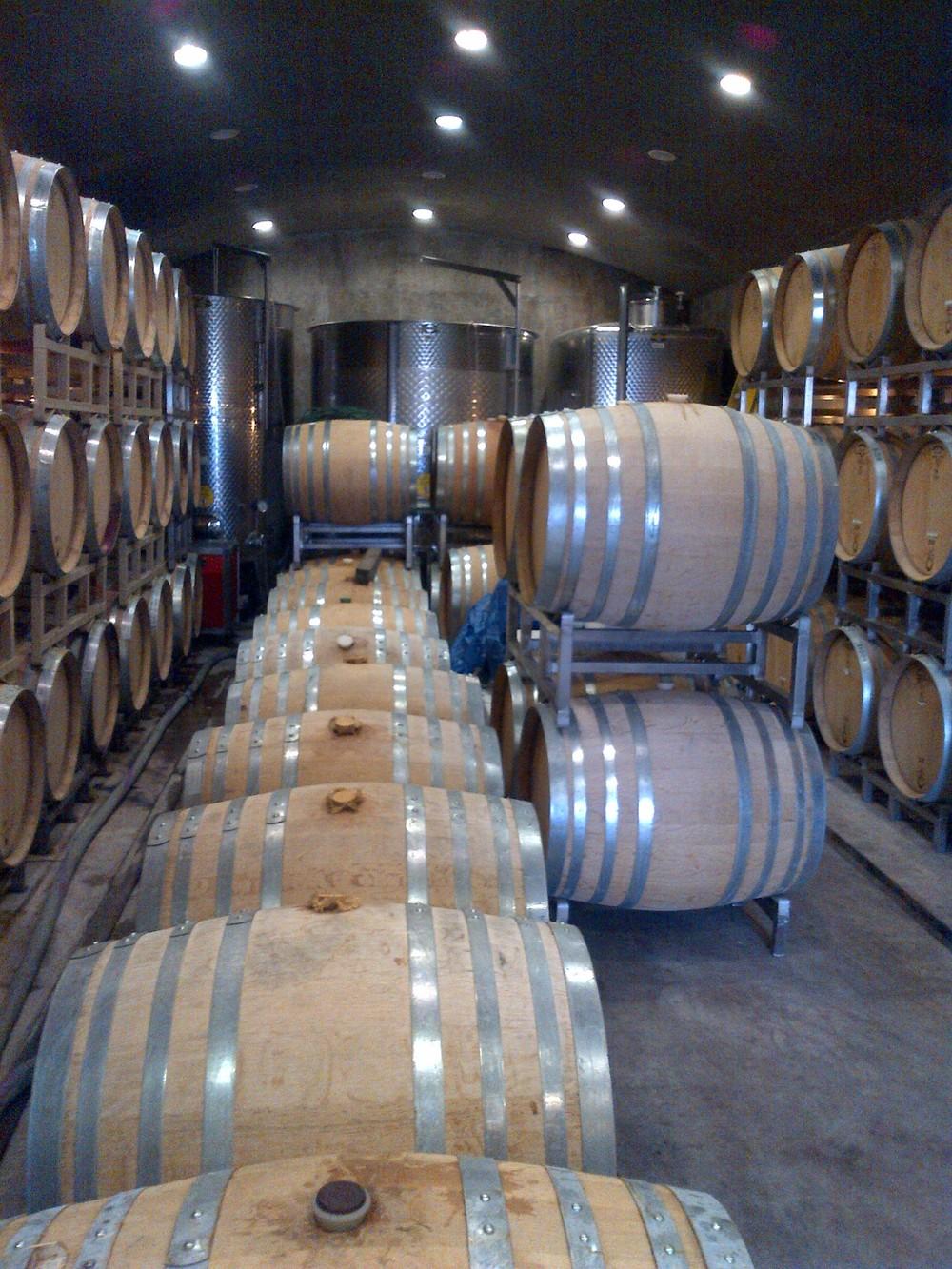 Inside the Foxtrot cellar...