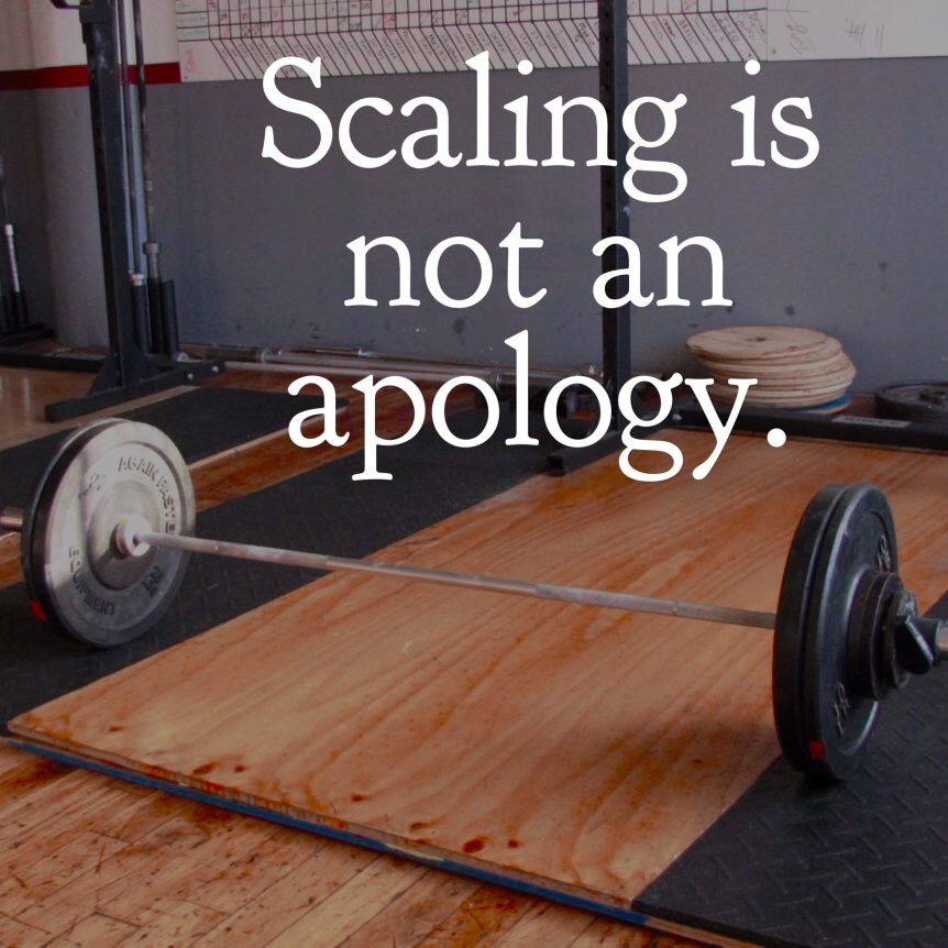 scaling is not an apology.jpg