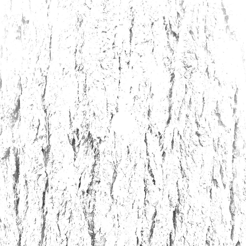 white-02.jpg