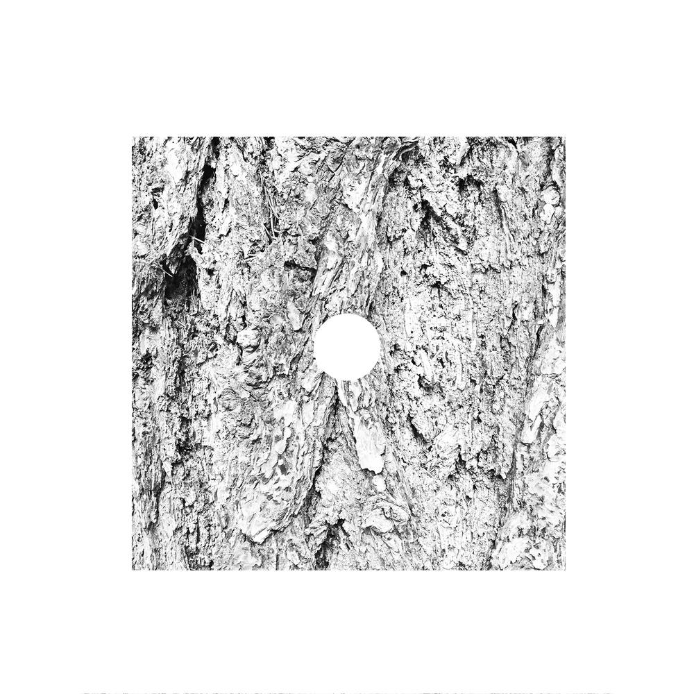 white-09.jpg