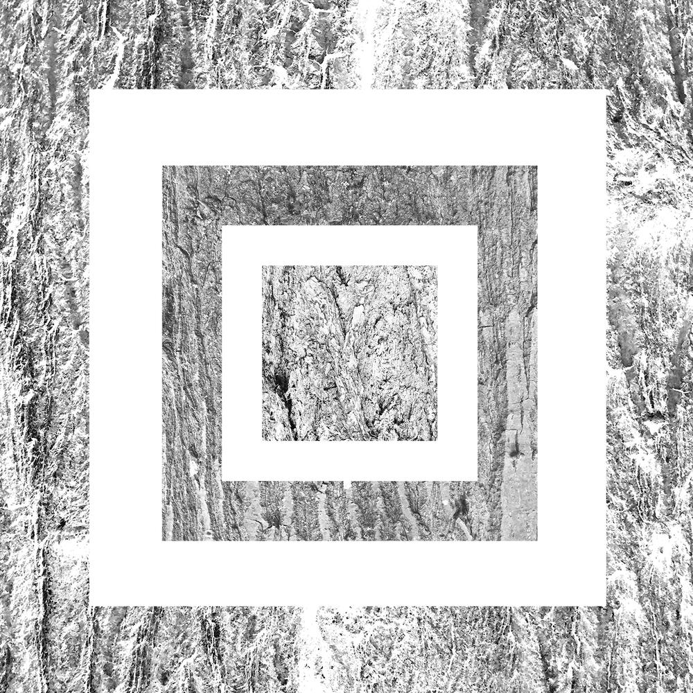 white-16.jpg