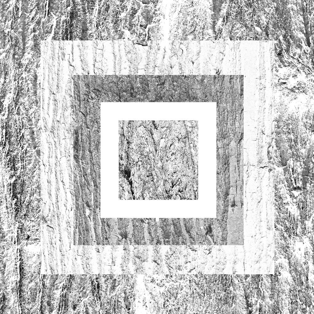 white-15.jpg
