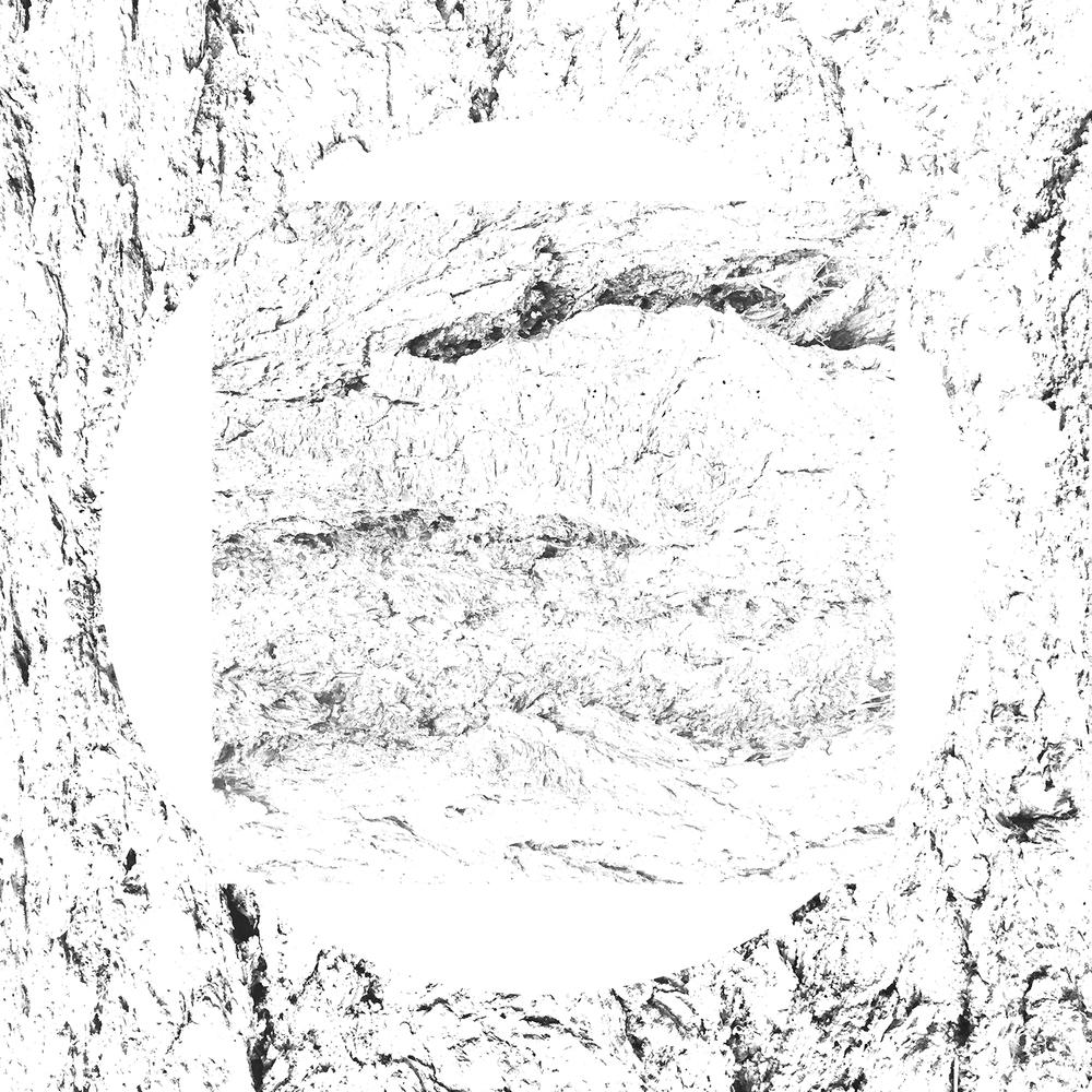 white-21.jpg