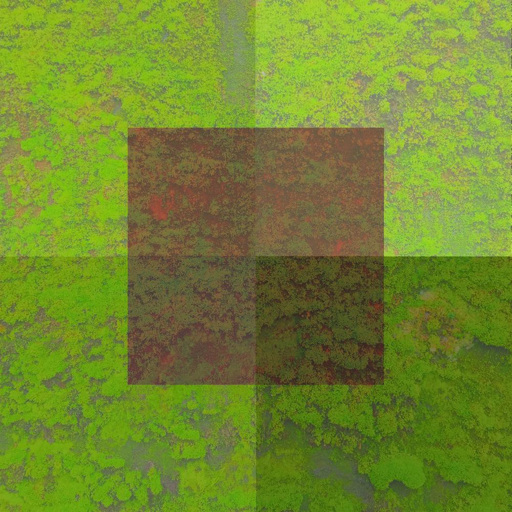 Vert-06.jpg