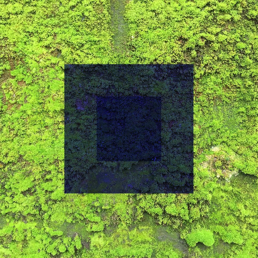 Vert-07.jpg