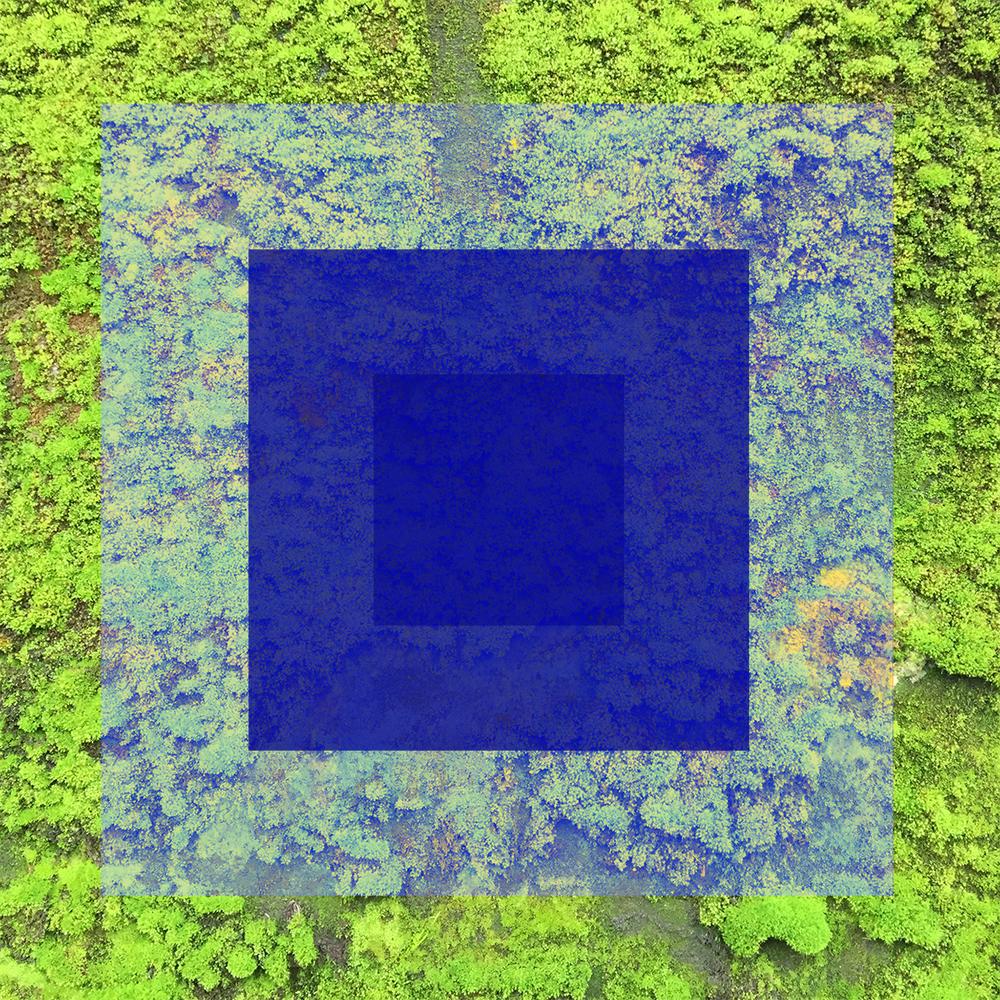 Vert-08.jpg