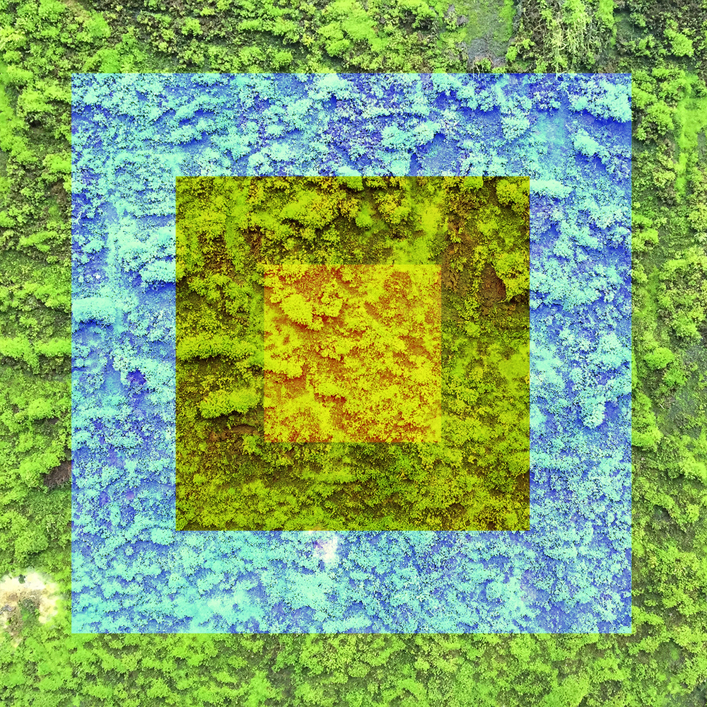 Vert-09.jpg