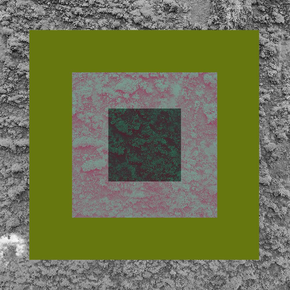Vert-10.jpg