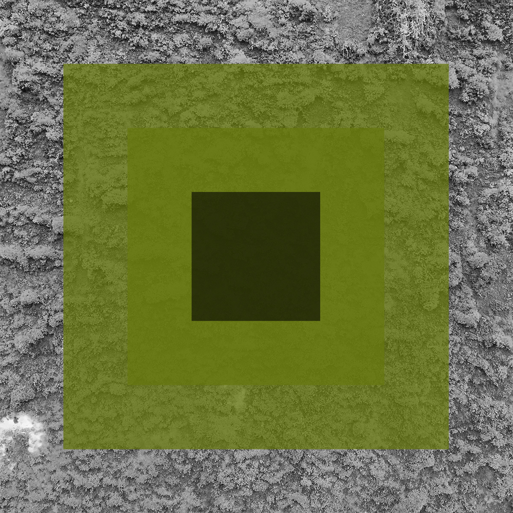 Vert-11.jpg