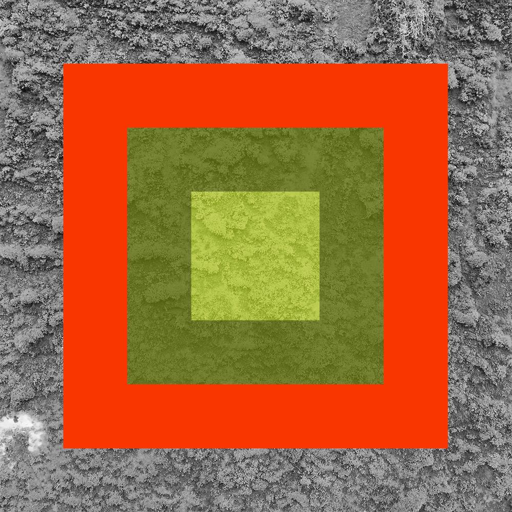 Vert-12.jpg
