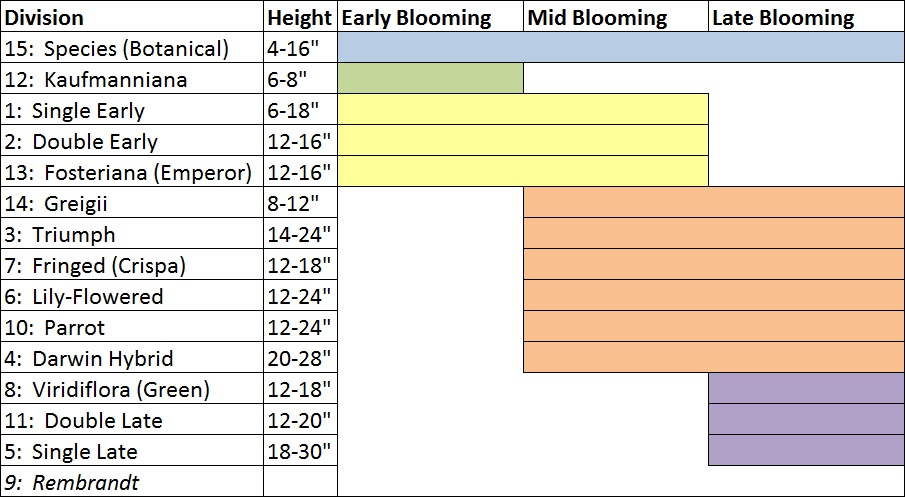 bloom table.jpg